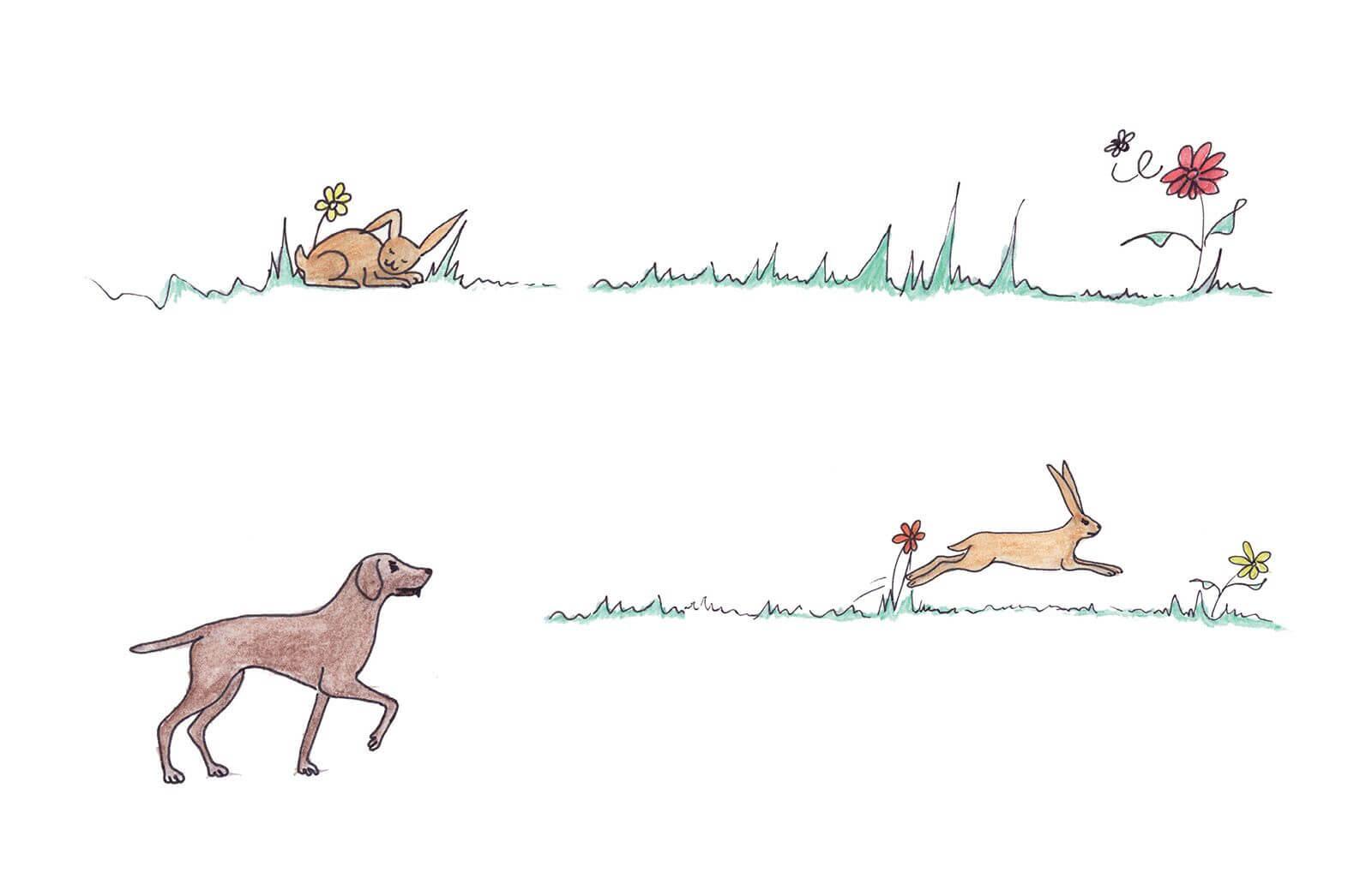 Haren hist i grøften